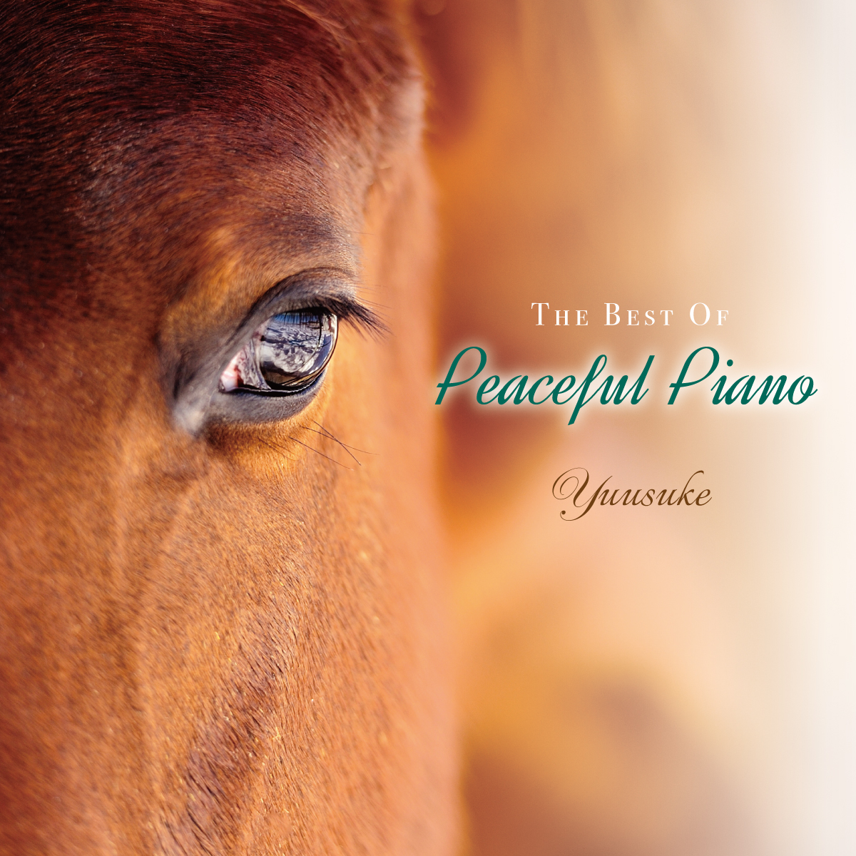 The Best of Peaceful Piano